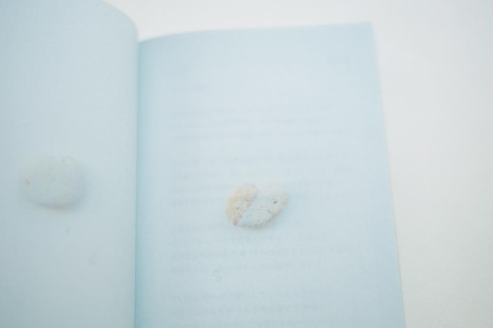 kokoroishi-book14