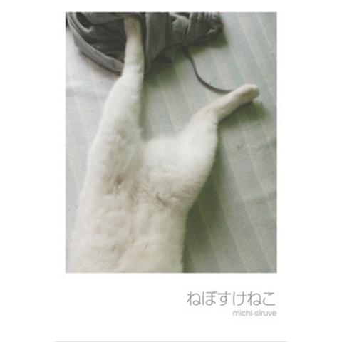 nebosuke-zine1sum