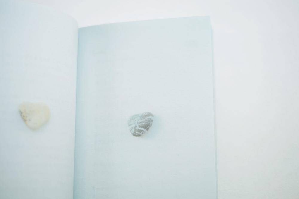 kokoroishi-book12