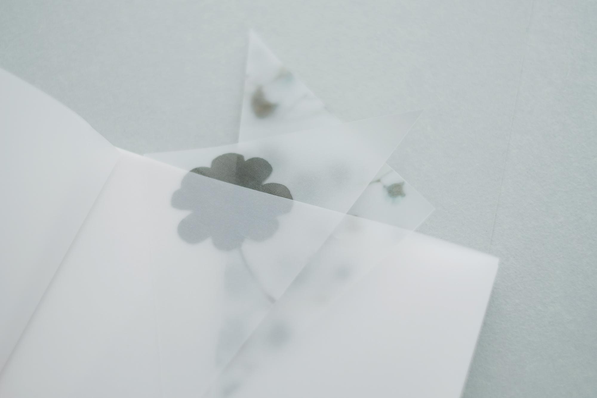 yohaku-flower05
