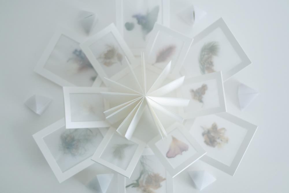 zine-bouquet01