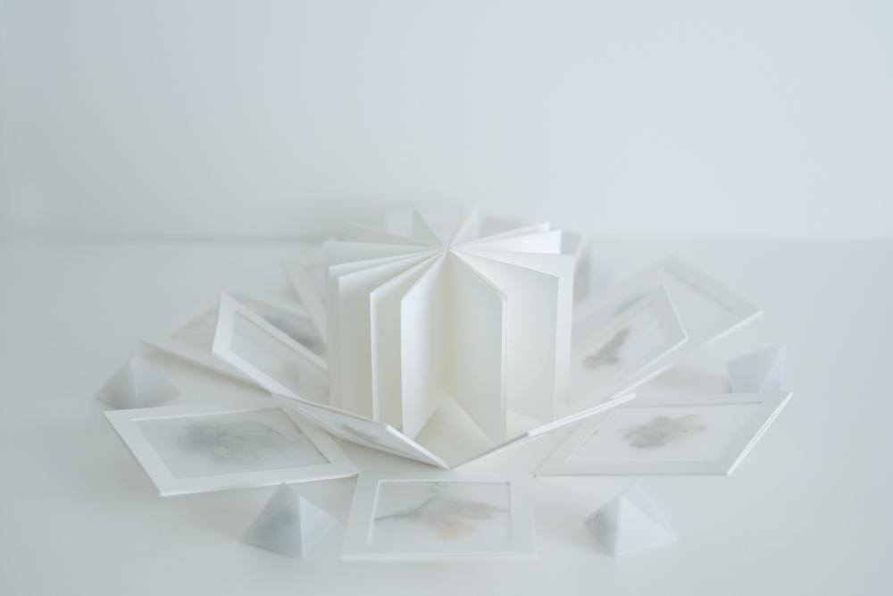 zine-bouquet02
