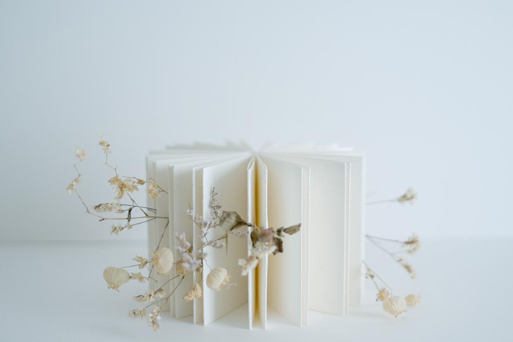 zine-flower04