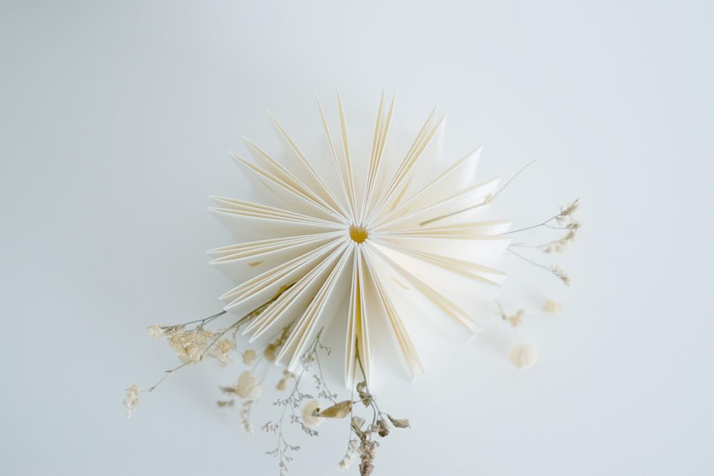 zine-flower05